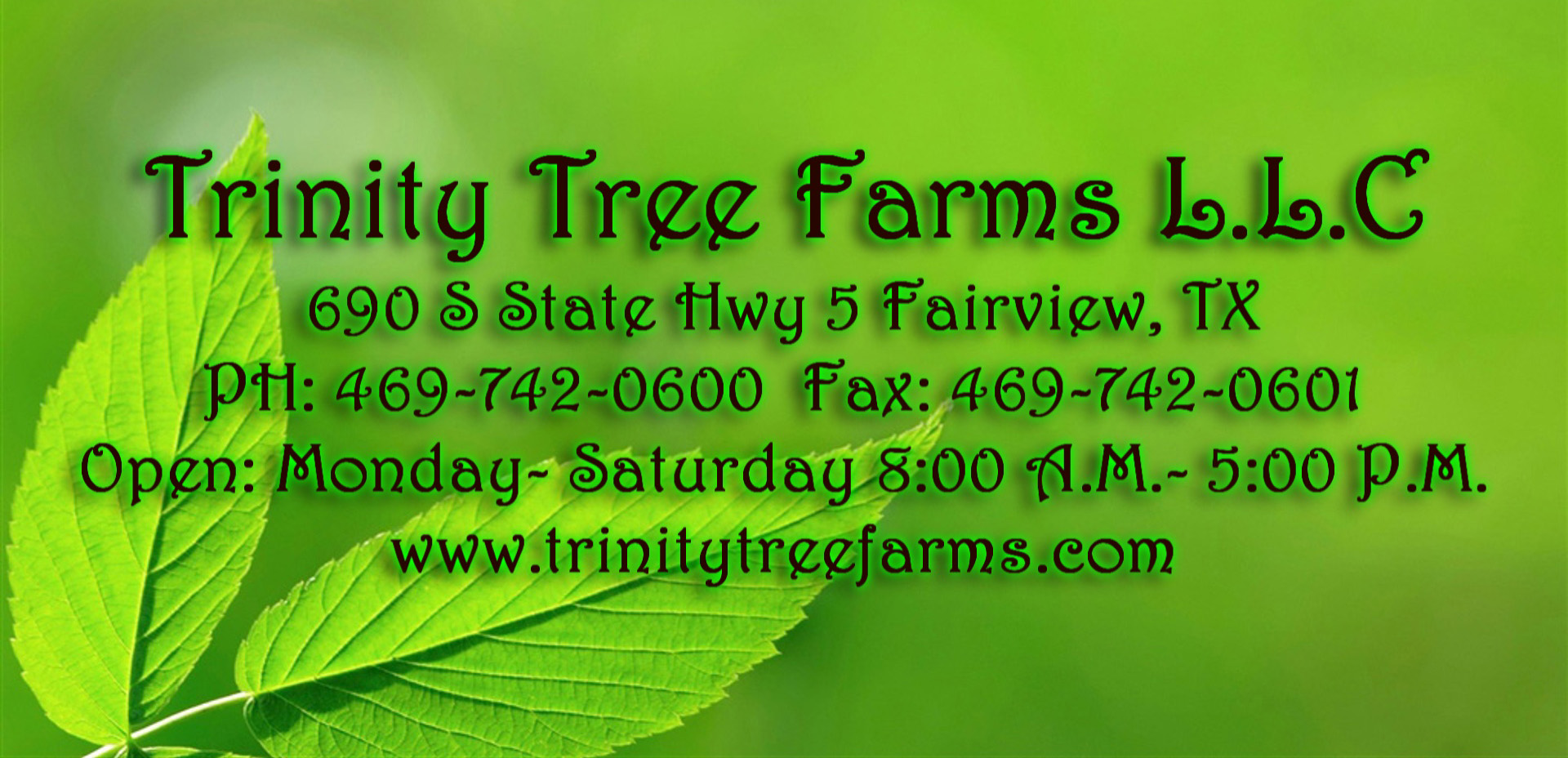 Trinity Tree Farms